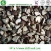 iqf frozen shiitake mushroom