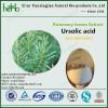Ursolic acid 25%,50%,98% by HPLC  cas77-52-1