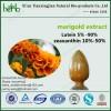 Marigold Extract Lutein&Zeaxanthin