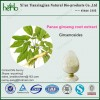 factory supplying ginseng extract Ginsenosides