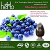 BLUEBERRY/BILBERRY EXTRACT POWDER