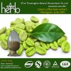 Green coffee bean extract Chlorognic acids 50% HPLC