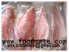 frozen red snapper fillet portion, blue shark, oilfish, anchovy