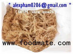 eucheuma cottonii seaweed, kappaphycus alvarezii, seamoss
