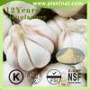 1% 2% 3% Allicin/ Garlic Powder Garlic Extract