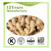 Gingerols 5% / Gingerols 10%Ginger Extract Herb Extract