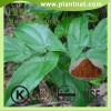 Epimedium Extract Icariin 40%