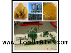 mango juice or slices production line