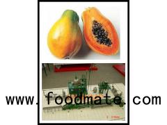 papaya processing plant