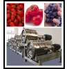 fruits pulping equipment