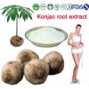 Herb Plant Extract Of Konjac Powder