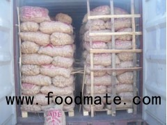 VEGETABLES FRUITS CHICKEN EGGS POTATO RED ONION 25KG BAGS FOB CNF MALE TUTICORIN