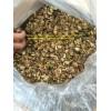 Calamansi powder ( Mobi/ whatsapp/ kakaotalk: 0084 907 886 929) E: swan120488 @ gmail.com