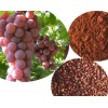 Grape Seed P.E,95%,98% polyphenols,98% procyani