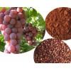 Grape Seed P.E,95%,98% polyphenols,98% procyani