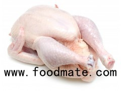 Grade A Frozen Chicken Feet, Paws, Breast, Whole Chicken, Legs and Wings