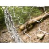 Galvanized Hexagonal Hole Chicken Wire