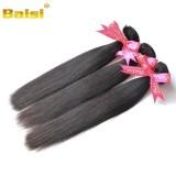 Cheap Malaysian 100% Virgin Hair Straight Hair Bundles No Tangle, No Shedding, Virgin Hair Extension