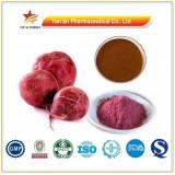 Herbal Red Beet Root Extract Betanin