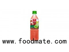 private label beverage manufacturers Aloe vera with pomeganate  flavor (https://ritadrinks.asia)