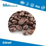 Cocoa Bean Extract|Theobromine|Alkalized Cocoa Powder for Sale