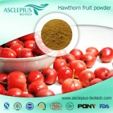 Hawthorn Berry Extract Powder Herbal Supplement Supplier Wholesale /the Active Ingrediants Is Vitexi