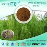 White Willow Bark Extract Powder,salicin Supplier Wholesale
