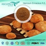 Hericium Erinaceus Extract Powder,hericiumsupplier Wholesale