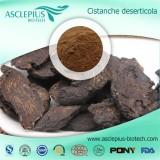 Cistanche Tubulosa Extract Supplier Wholesale / ,cistanoside,echinacoside,acteoside