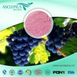 White Grape Red Grape Juice Powder Supplier Wholesale