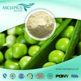 Pea Protein Powder,chocolate Pea Protein Powder Supplier Wholesale