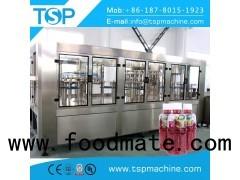 2000-4000 BPH PET/Glass Carriot juice filling machine Poland