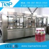 2000-4000 BPH PET/Glass Carriot juice filling machine Poland