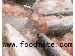 Salmon,whole salmon gutted salmon,salmon fillet,salmon head, frozen salmom
