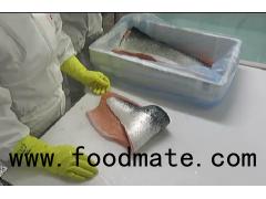 Fresh Atlantic cod fillet