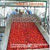 China professional supplier of tomato paste production line/tomato sauce making machine