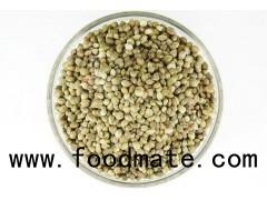 Hemp Protein rich in stock