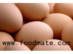 Fresh Brown/White Chicken Eggs