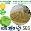 Mulberry leaf extract 1-DNJ 1-Deoxynojirimycin manufacturer