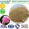 rose extract rose flavones rose flavonoids