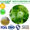 weight loss material 1-DNJ Mulberry leaf extract manufacturer