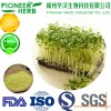 strong detoxification material broccoli sprout extract sulforaphane factory