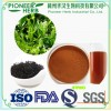 popular drinks material instant black tea powder in good quality