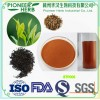 water soluble instant black tea powder widely used in various beverages