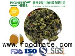 water soluble oolong tea powder for various drinks and beverages