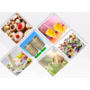 Factory Price Supply Low Acyl / High Acyl Gellan Gum for Food Additives