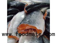 Fresh Atlantic  Trout Fish / Quality Trout Fish