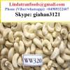 CASHEW NUT W240 W320 W450/CASHEW WS/ CASHEW HUSK_Whatsapp: +84989322607