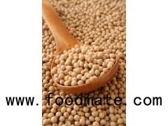 Soybeans / Non Gmo Soybeans / Soya Bean
