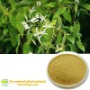 Nature Licorice extract powder from licorice root  Glycyrrhizic acid Pharmaceutical Raw Materials